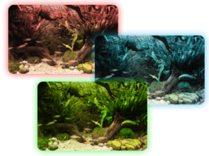 Aquasky Color