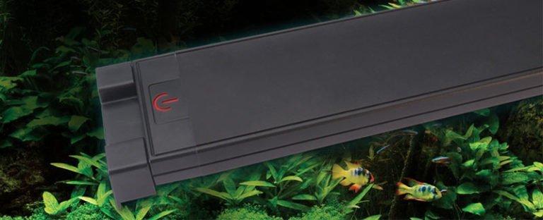 fluval plant spectrum 3 interruptor