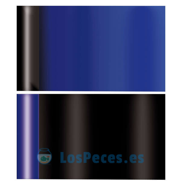 fondo de acuario azul negro