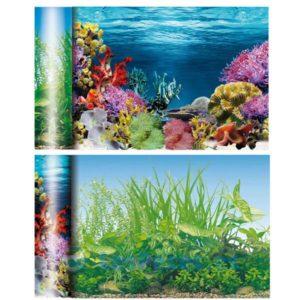 Fondo de acuario marino / estanque