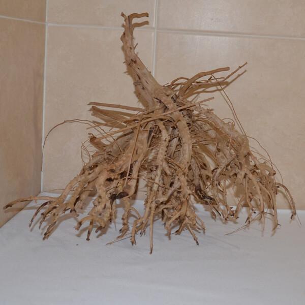 Satung wood