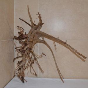 Raíces de acuario Twisted Wood