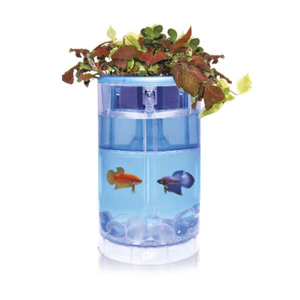 Kit Betta Flora LED azul