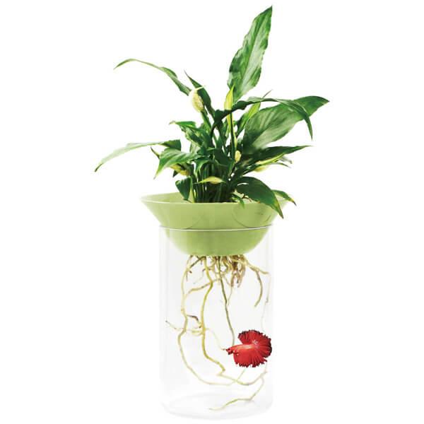 Pecera / Betera NATURE (1.2 l) verde