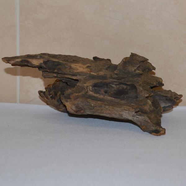 troncos nano acuario